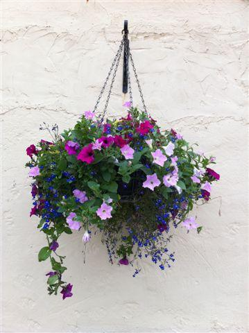 Hanging Basket Outside the Hayloft South Littleton